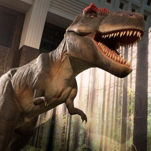 20140120-Dino_0044